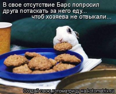 Котоматрица: В свое отсутствие Барс попросил  друга потаскать за него еду... чтоб хозяева не отвыкали...