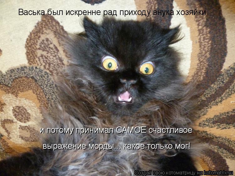Котоматрица: Васька был искренне рад приходу внука хозяйки выражение морды... какое только мог! и потому принимал САМОЕ счастливое