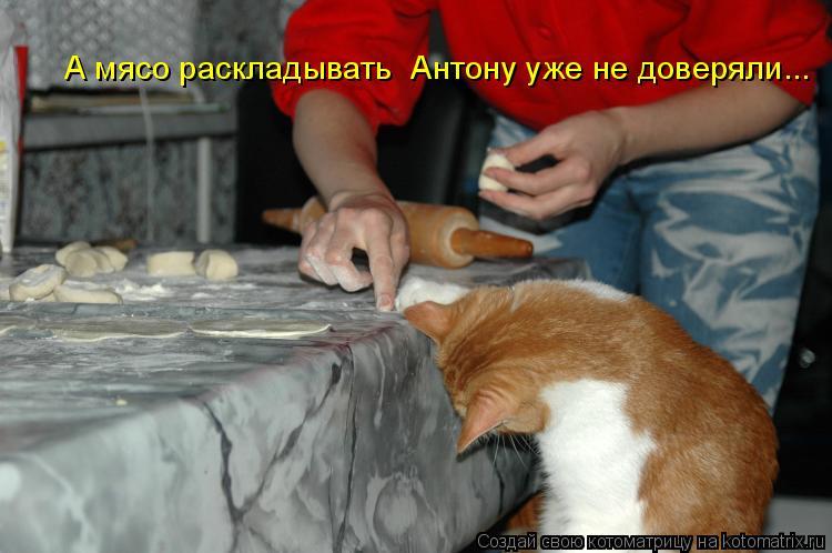 А мясо раскладывать  Антону уже не доверяли...