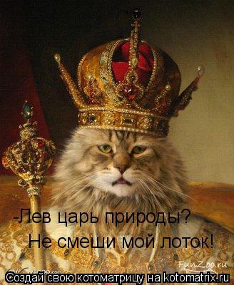 Котоматрица: -Лев царь природы? Не смеши мой лоток!
