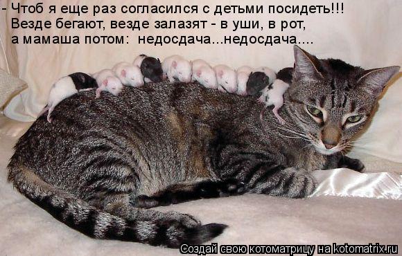 Котоматрица: а мамаша потом:  недосдача...недосдача.... - Чтоб я еще раз согласился с детьми посидеть!!! Везде бегают, везде залазят - в уши, в рот,