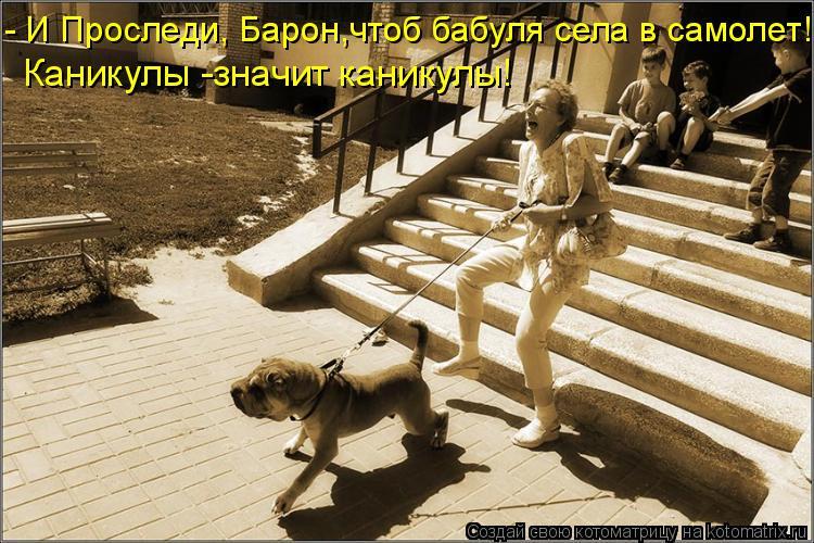 - И Проследи, Барон,чтоб бабуля села в самолет! Каникулы -значит каник