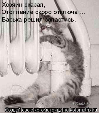 Котоматрица: Хозяин сказал,  Отопление скоро отключат... Васька решил запастись.