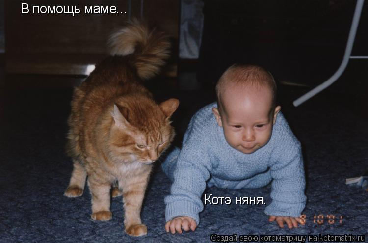 Котоматрица: В помощь маме... Котэ няня.