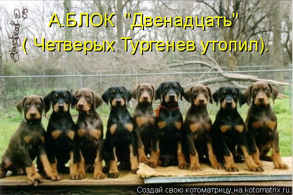 """Котоматрица: А.БЛОК  """"Двенадцать"""" ( Четверых Тургенев утопил)."""