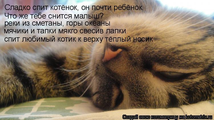 Стих как сладко ты спишь