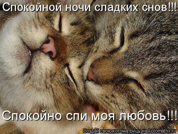 картинки про любовь спокойной ночи