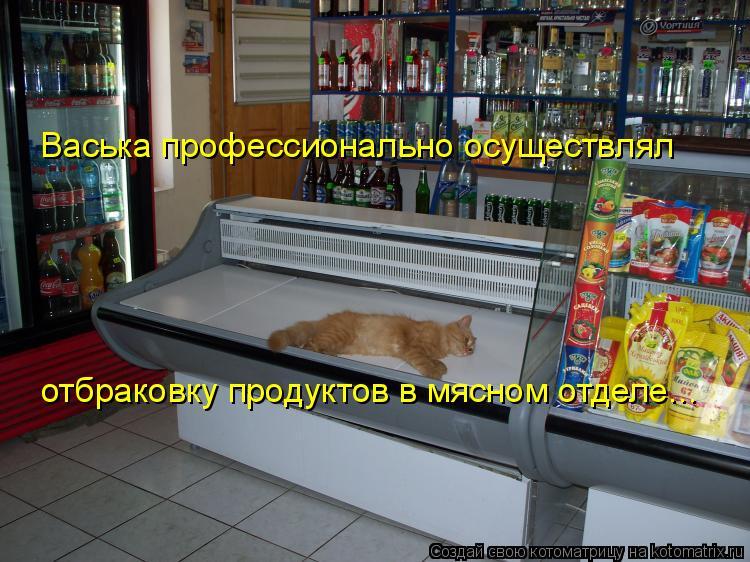 Котоматрица: Васька профессионально осуществлял отбраковку продуктов в мясном отделе...