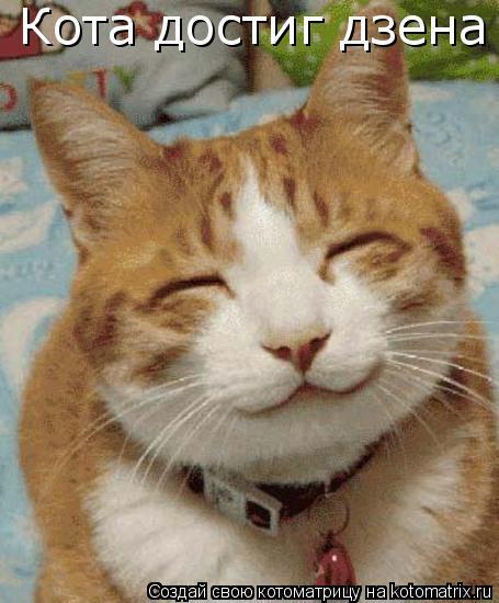 Котоматрица: Кота достиг дзена
