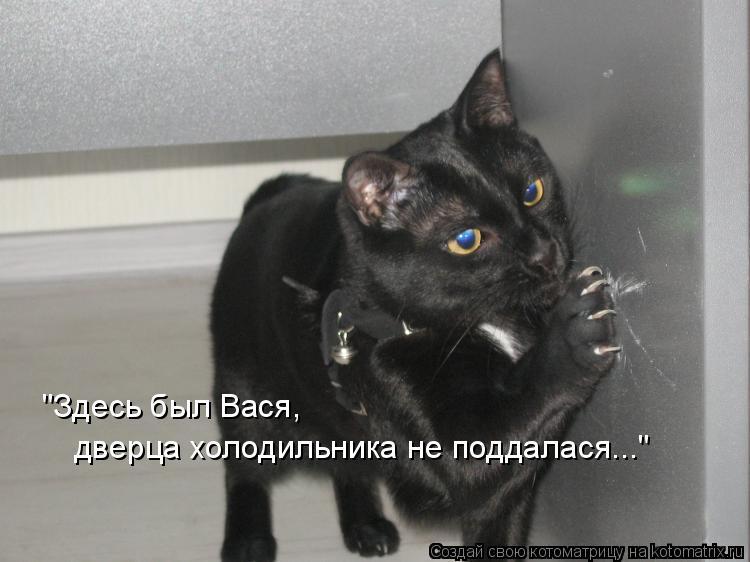 """Котоматрица: """"Здесь был Вася, дверца холодильника не поддалася..."""""""