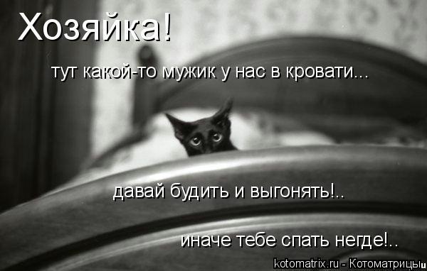 Котоматрица: Хозяйка! тут какой-то мужик у нас в кровати... давай будить и выгонять!.. иначе тебе спать негде!..