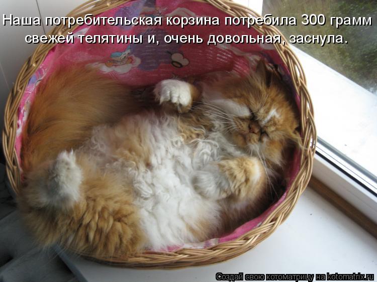Котоматрица: Наша потребительская корзина потребила 300 грамм свежей телятины и, очень довольная, заснула.