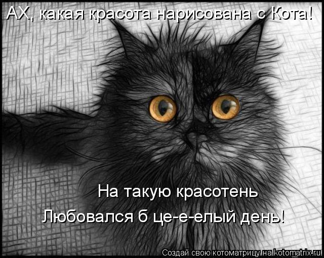 Котоматрица: АХ, какая красота нарисована с Кота! На такую красотень  Любовался б це-е-елый день!