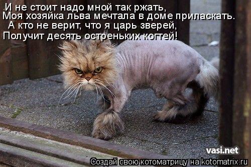 Котоматрица: И не стоит надо мной так ржать, Моя хозяйка льва мечтала в доме приласкать… А кто не верит, что я царь зверей, Получит десять остреньких когт