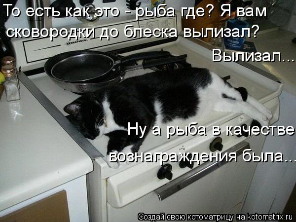 Котоматрица: То есть как это - рыба где? Я вам  Ну а рыба в качестве  вознаграждения была... сковородки до блеска вылизал? Вылизал...
