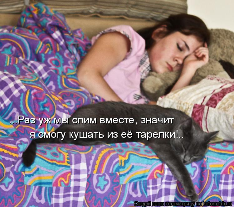 Котоматрица: ...Раз уж мы спим вместе, значит я смогу кушать из её тарелки!..