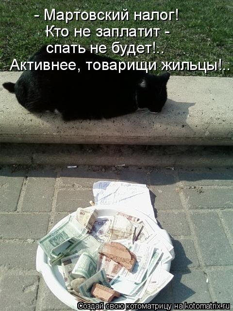 Котоматрица: - Мартовский налог! Кто не заплатит - спать не будет!.. Активнее, товарищи жильцы!..