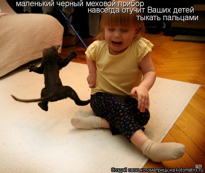 Котоматрица: маленький черный меховой прибор навсегда отучит Ваших детей тыкать пальцами