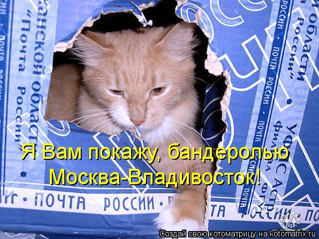 Котоматрица: Я Вам покажу, бандеролью  Москва-Владивосток!