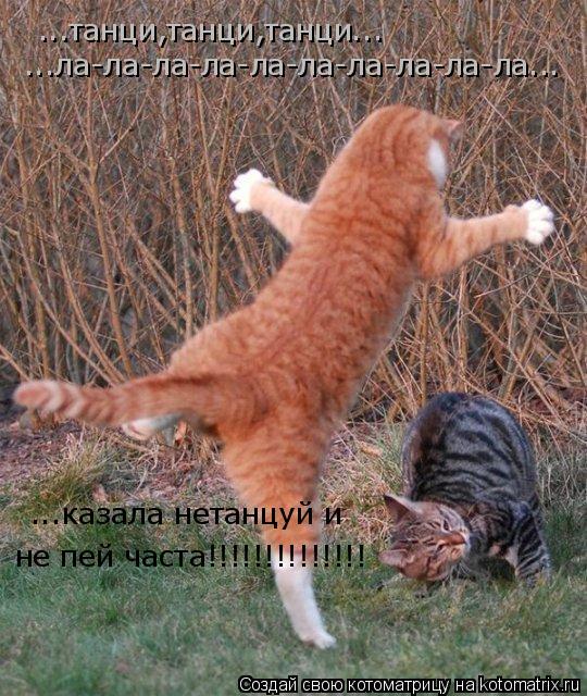 Котоматрица: ...танци,танци,танци... ...ла-ла-ла-ла-ла-ла-ла-ла-ла-ла... ...казала нетанцуй и не пей часта!!!!!!!!!!!!!!