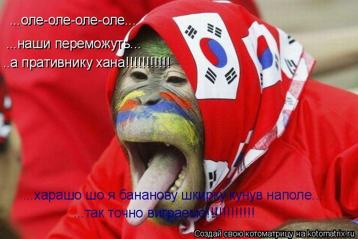 Котоматрица: ...оле-оле-оле-оле... ...наши переможуть... ..а пративнику хана!!!!!!!!!!! ...харашо шо я бананову шкирку кунув наполе... ...так точно виграемо!!!!!!!