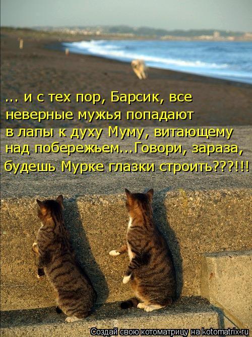 Котоматрица: неверные мужья попадают ... и с тех пор, Барсик, все  в лапы к духу Муму, витающему  над побережьем...Говори, зараза, будешь Мурке глазки строить