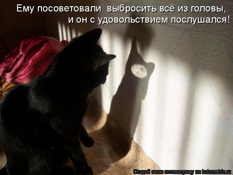 Котоматрица: Ему посоветовали  выбросить всё из головы, и он с удовольствием послушался!