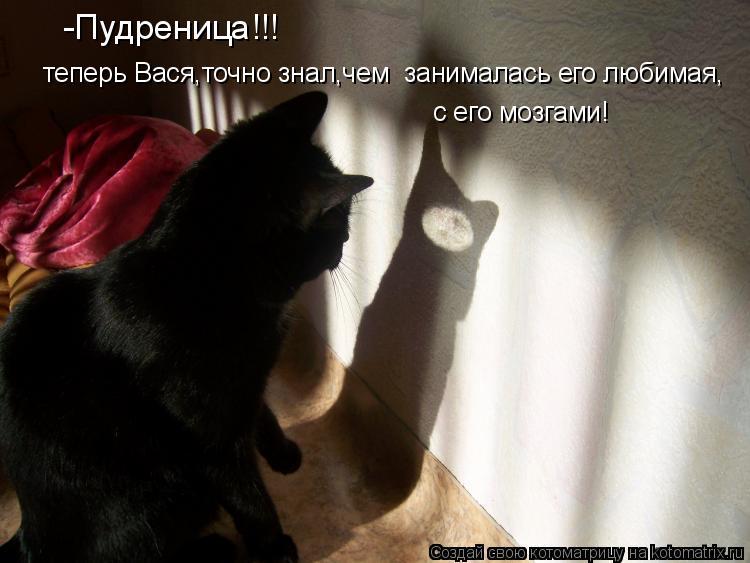 Котоматрица: -Пудреница!!! теперь Вася,точно знал,чем  занималась его любимая, с его мозгами!
