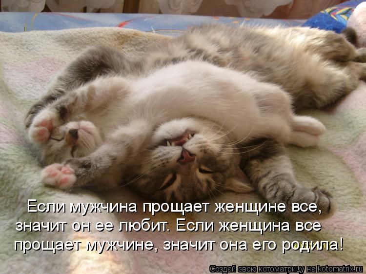 Котоматрица: Если мужчина прощает женщине все,  значит он ее любит. Если женщина все прощает мужчине, значит она его родила!