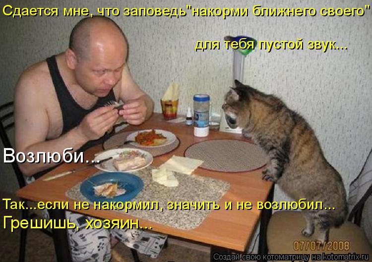 """Котоматрица: Сдается мне, что заповедь""""накорми ближнего своего"""" для тебя пустой звук... Грешишь, хозяин... Возлюби... Так...если не накормил, значить и не воз"""