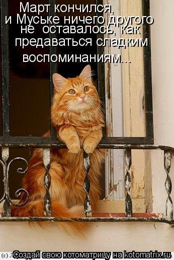 Котоматрица: Март кончился, и Муське ничего другого  не  оставалось, как  предаваться сладким  воспоминаниям...