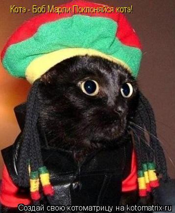 Котоматрица: Котэ - Боб Марли.Поклоняйся котэ!