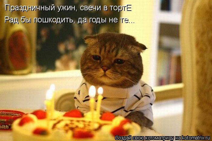 Котоматрица: Праздничный ужин, свечи в тортЕ Рад бы пошкодить, да годы не те...