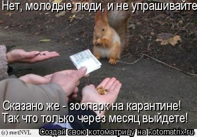 Котоматрица: Нет, молодые люди, и не упрашивайте! Сказано же - зоопарк на карантине! Так что только через месяц выйдете!