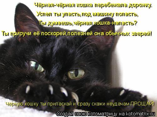 Котоматрица: Чёрная-чёрная кошка перебежала дорожку. Успел ты упасть,под машину попасть, Ты думаешь,чёрная кошка-напасть? Ты приручи её поскорей,полезне