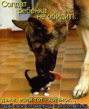 Котоматрица: Солдат   ребёнка не обидит!.. даже, если тот - котёнок...
