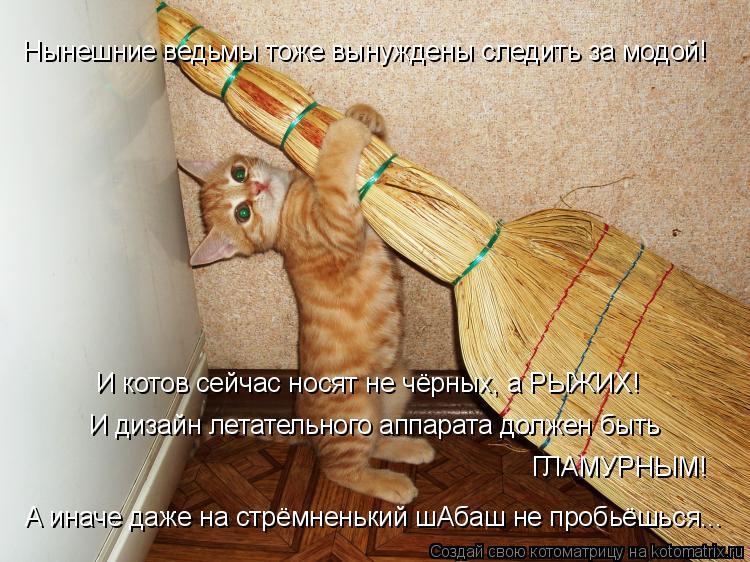 Котоматрица: И котов сейчас носят не чёрных, а РЫЖИХ!  И дизайн летательного аппарата должен быть ГЛАМУРНЫМ! Нынешние ведьмы тоже вынуждены следить за мо