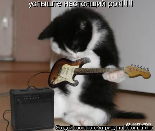 Котоматрица: услыште настоящий рок!!!!!