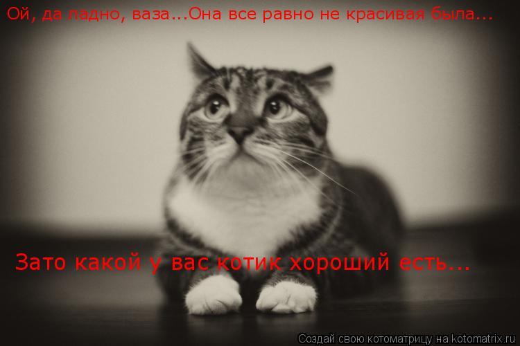 Котоматрица: Ой, да ладно, ваза...Она все равно не красивая была... Зато какой у вас котик хороший есть...