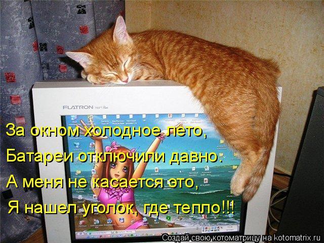 Котоматрица: За окном холодное лето, Батареи отключили давно. А меня не касается это, Я нашел уголок, где тепло!!!