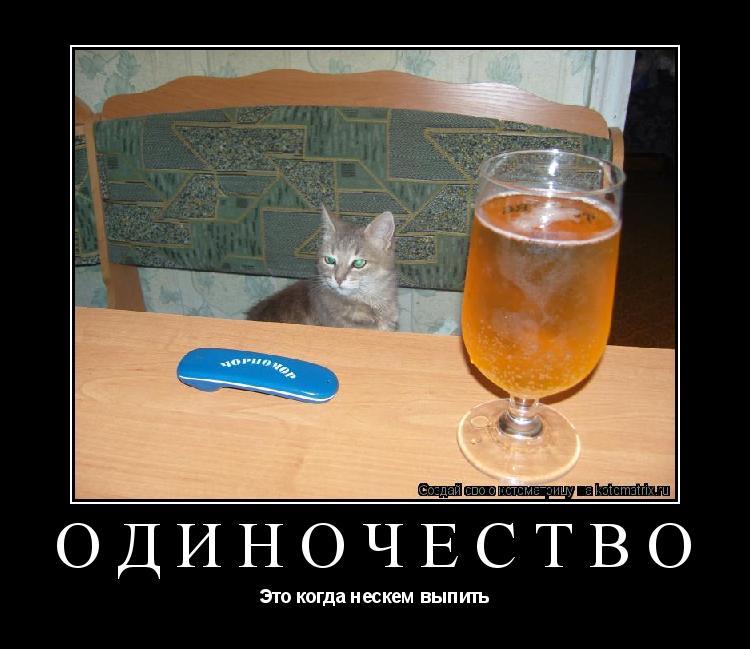 Котоматрица: Одиночество Это когда нескем выпить