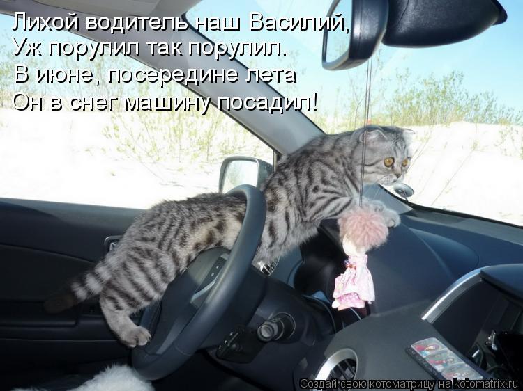 Котоматрица: Лихой водитель наш Василий, Уж порулил так порулил. В июне, посередине лета Он в снег машину посадил!