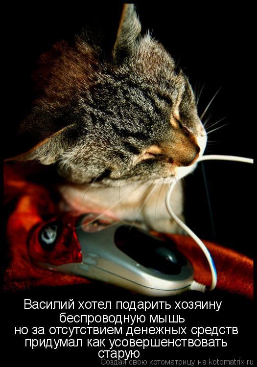 Котоматрица: Василий хотел подарить хозяину беспроводную мышь но за отсутствием денежных средств придумал как усовершенствовать  старую