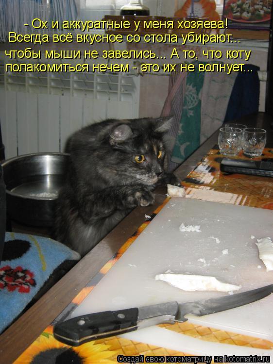Котоматрица: - Ох и аккуратные у меня хозяева! чтобы мыши не завелись... А то, что коту полакомиться нечем - это их не волнует... Всегда всё вкусное со стола у