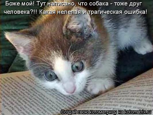 Котоматрица: Боже мой! Тут написано, что собака - тоже друг  человека?!! Какая нелепая и трагическая ошибка!