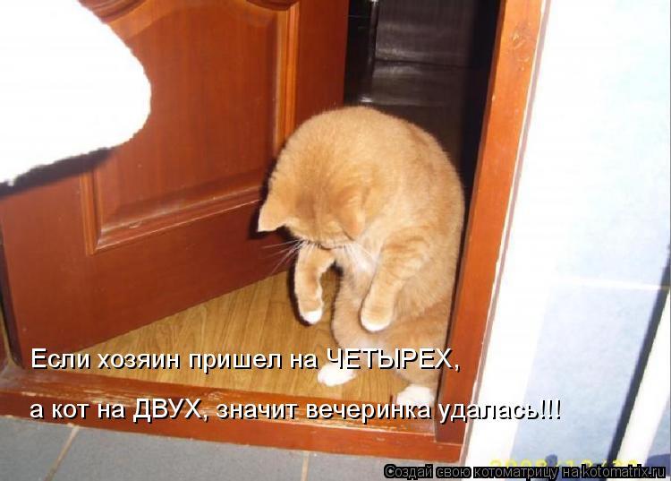Котоматрица: Если хозяин пришел на ЧЕТЫРЕХ, а кот на ДВУХ, значит вечеринка удалась!!!