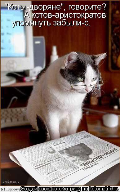"""Котоматрица: """"Коты-дворяне"""", говорите? А котов-аристократов  упомянуть забыли-с."""