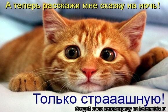 """На Донбассе продолжают закрываться """"отжатые"""" шахты, оккупанты отправляют горняков в неоплачиваемые отпуска, - ГУР - Цензор.НЕТ 3741"""