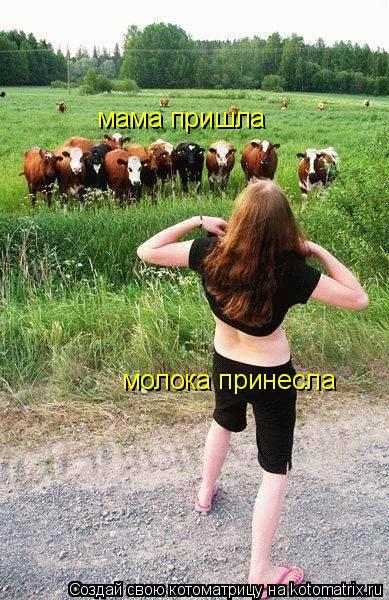 Котоматрица: мама пришла молока принесла