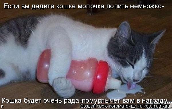 Котоматрица: Если вы дадите кошке молочка попить немножко- Кошка будет очень рада-помурлычет вам в награду...